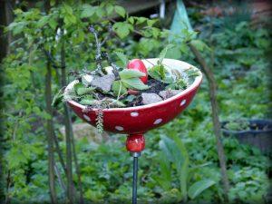 Schale Gartenkeramik